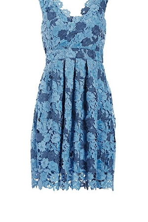 blue floral lace fit-and-flare dress.