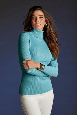 Beyond Basics Ribbed Turtleneck Sweater